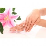 Beautiful woman hands and lily flower